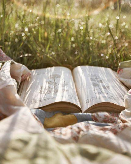 Книги и лето