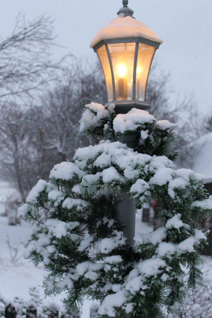 Подарки зимы