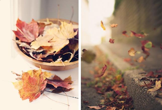 Как полюбить осень